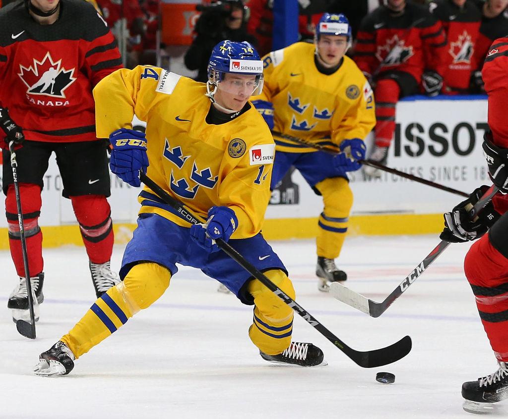 Pettersson harhautteli sarjakauden päätyttyä vielä MM-kisoissa.