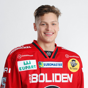 Aleksi Matinmikko