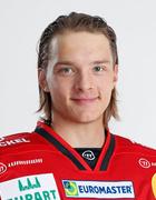Niklas Peltomäki, #28